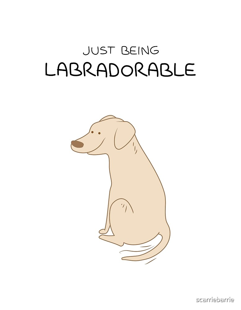 Yellow Lab Being Labradorable  by scarriebarrie