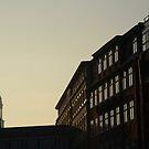 Hamburg Sunset by vonb