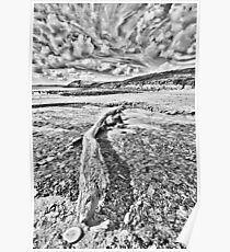 Driftwood Pencil Sketch Poster