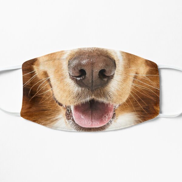Golden Retriever Dog Face Flat Mask