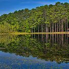 Calm Reflections by KRphotog