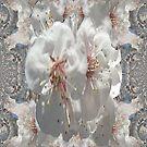 Spring flowers i phone 4 by Margherita Bientinesi
