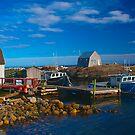 Blue Rocks, Nova Scotia, Canada by Darlene Ruhs
