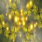 Mimosa dream by Margherita Bientinesi