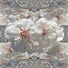 Fiori bianchi by Margherita Bientinesi