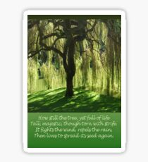 How Still the Tree Photograph and Prose Sticker