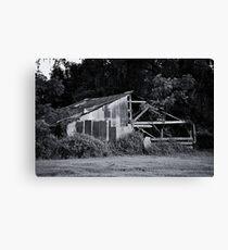 Tree Growing Through a Barn Canvas Print