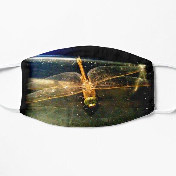 Beautiful Dragonfly Mask