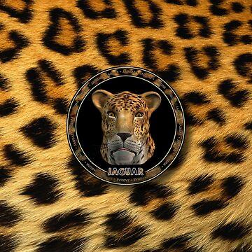 Jaguar - Mac OS X 10.2 by martinographics