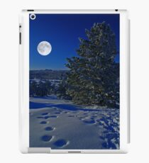 Moonlight night iPad Case/Skin