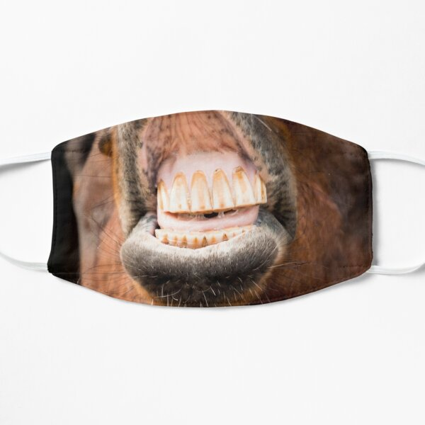 Masque facial dents de cheval Masque sans plis