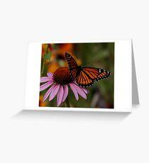 King of Echinacea Greeting Card