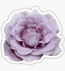 Lilac Garden Rose - Hipster/Pretty/Trendy Flowers Sticker