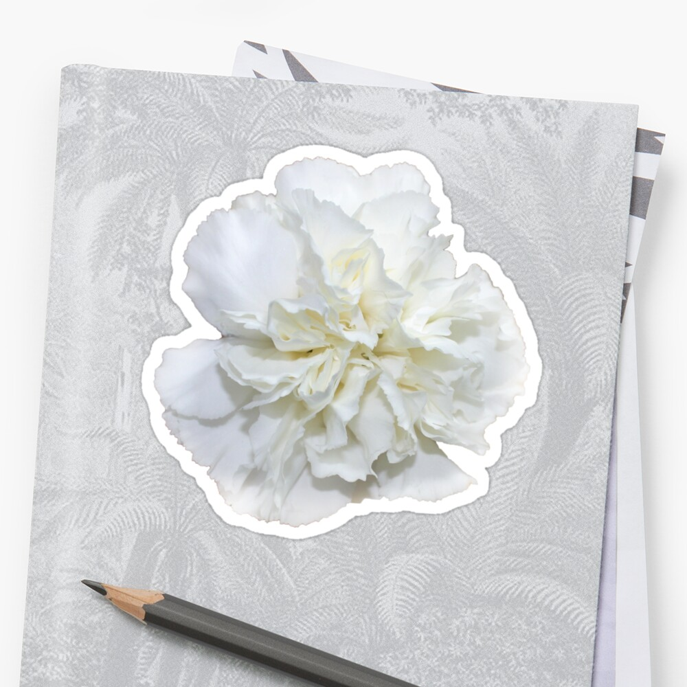 Single White Carnation Hipsterprettytrendy Flowers Stickers By
