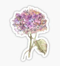 Herbst Hortensie Sticker