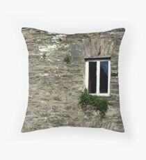Stone Wall With Window Throw Pillow