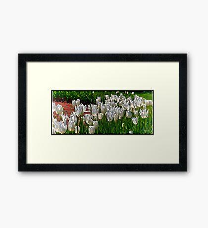 Spring 2 Framed Print