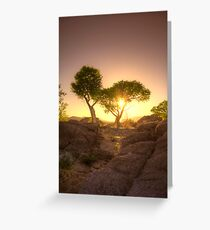 Shading Sunset Greeting Card