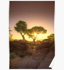 Shading Sunset Poster
