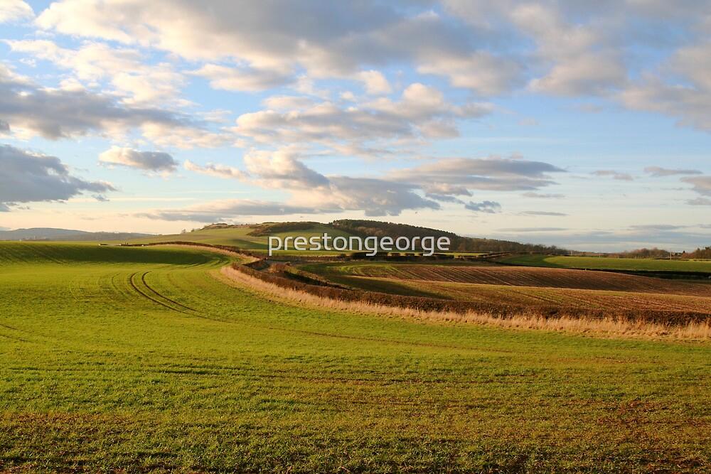 Rural Northumberland. by prestongeorge