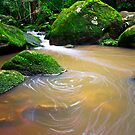 Somersby Falls - Creek by Mathew Courtney