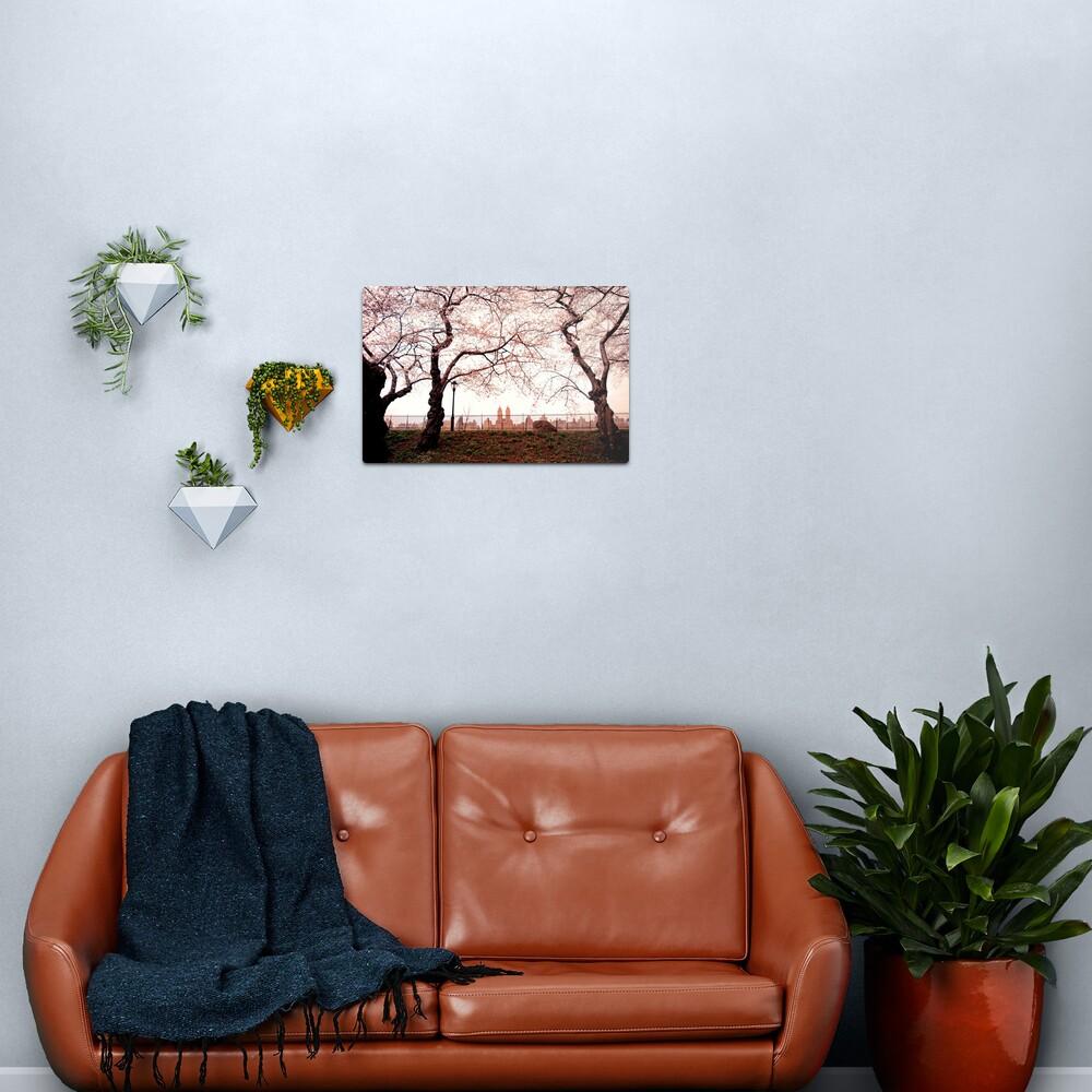 Cherry Blossoms - Central Park Reservoir - New York City Metal Print