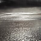 Beach Walker at Formby by Robin Whalley