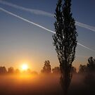 MILANO SUNRISE by mc27