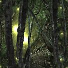 Enchanted Forest I phone 4 by Margherita Bientinesi