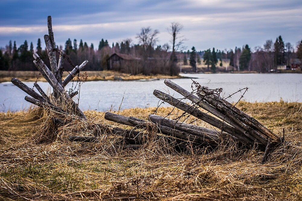 Fence In A Haystack by Matti Ollikainen