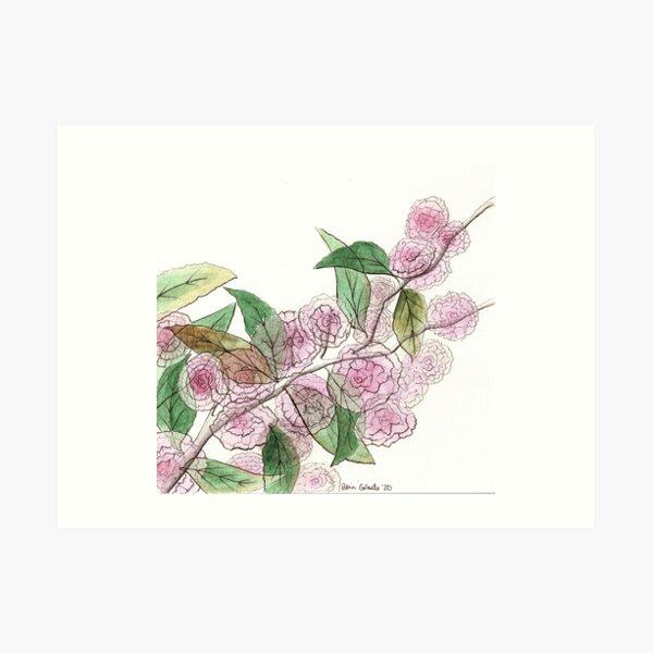 Cherry Blossoms Across the Street Art Print