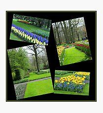 April in the Keukenhof Gardens Collage Photographic Print
