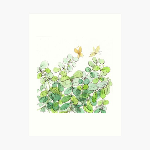 The Licorice Plant in My Yard Art Print