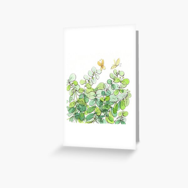 The Licorice Plant in My Yard Greeting Card