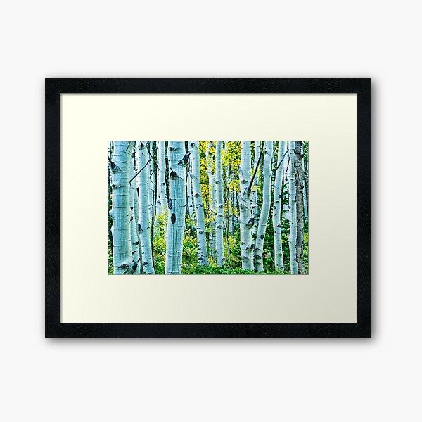 The Maze Of Fall Framed Art Print