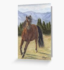 Mountain Starr Greeting Card