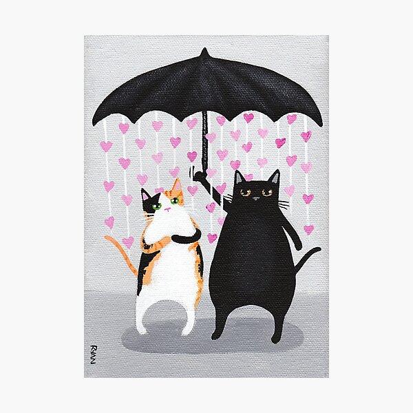 Love Rains Down Cats Photographic Print