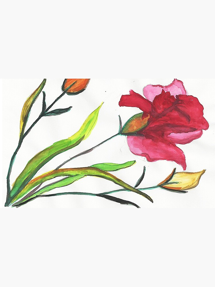 Carnations Watercolor Painting by irenebernhardt