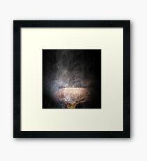 Fungus the Magician  Framed Print