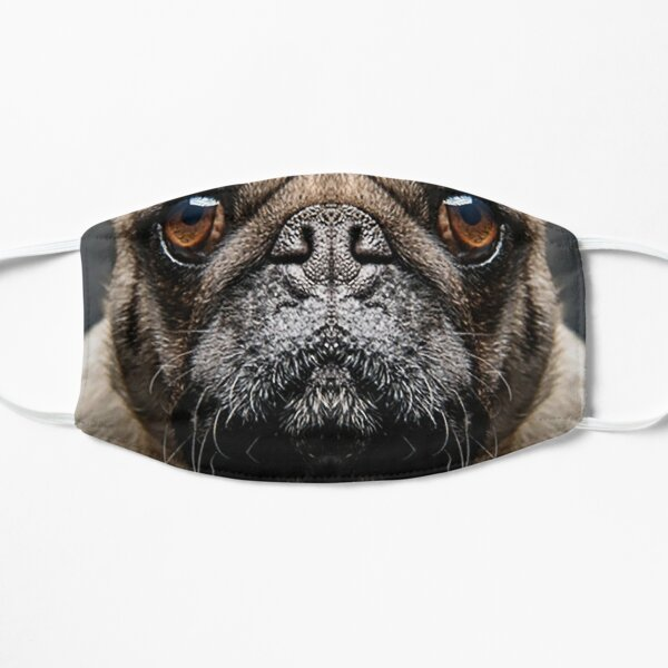 Grumpy Pug With a Very Sad Face Animals Gifts Safe Face protection covering Men Women Flat Mask