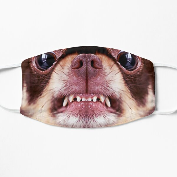 Chihuahua aggressive dog snarling and looking angry Animals Gifts Safe Face protection covering Men Women Mask