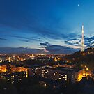 Night view on High Castle Hill, Lviv by Oleksii Rybakov