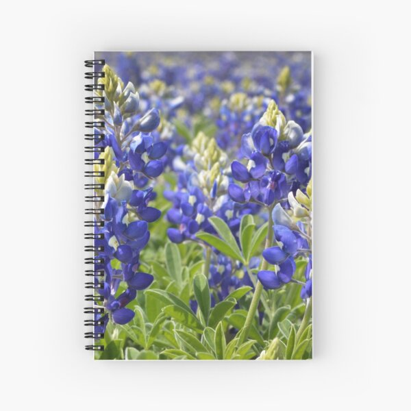 Bluebonnets Spiral Notebook
