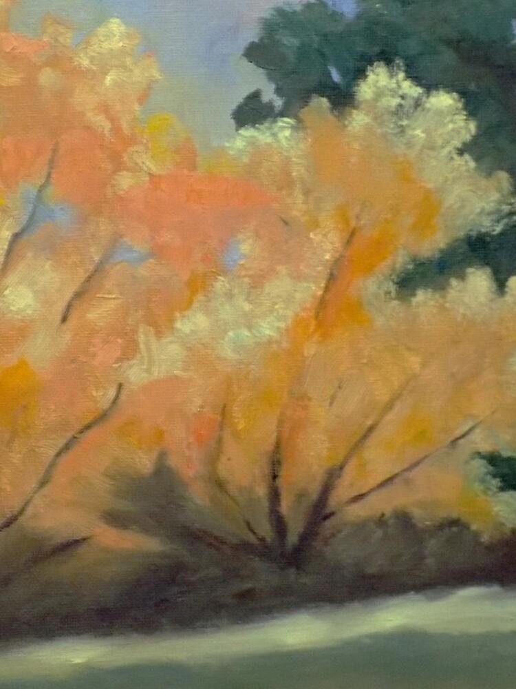Trees by irenebernhardt