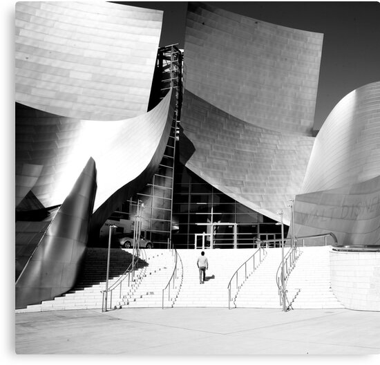 Walt Disney Concert Hall by Barry Elkins