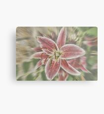 Pictures Of Lily Metal Print