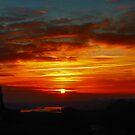 Tynemouth Sun Set by Reinhardt