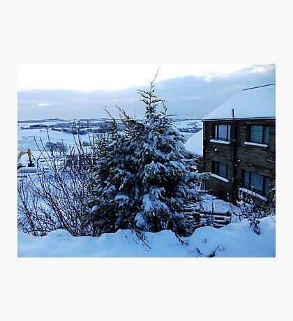 A Snowy World Lay Behind Thy Branches! Photographic Print