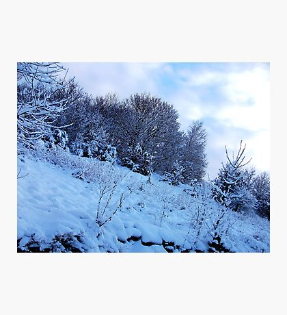 Hanging Perilously With A Snowy Coating! Photographic Print