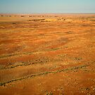 Lake Eyre 2 by Richard  Windeyer